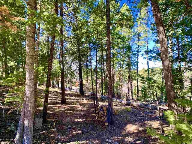 905 Sugar Pine Dr #1, Cloudcroft, NM 88317 (MLS #161670) :: Assist-2-Sell Buyers and Sellers Preferred Realty