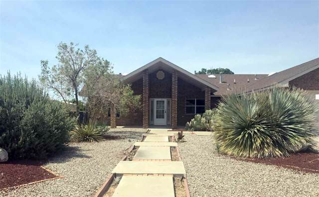 2250 Camino De Suenos, Alamogordo, NM 88310 (MLS #161698) :: Assist-2-Sell Buyers and Sellers Preferred Realty