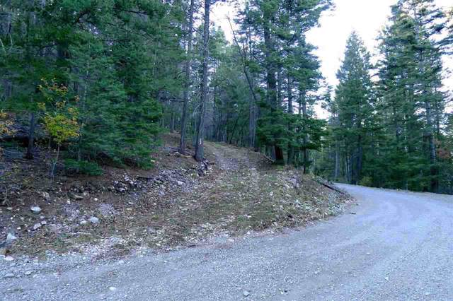 90 Ely Ln, Cloudcroft, NM 88317 (MLS #161701) :: Assist-2-Sell Buyers and Sellers Preferred Realty