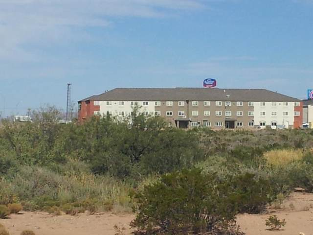 Hamilton Rd, Alamogordo, NM 88310 (MLS #161736) :: Assist-2-Sell Buyers and Sellers Preferred Realty