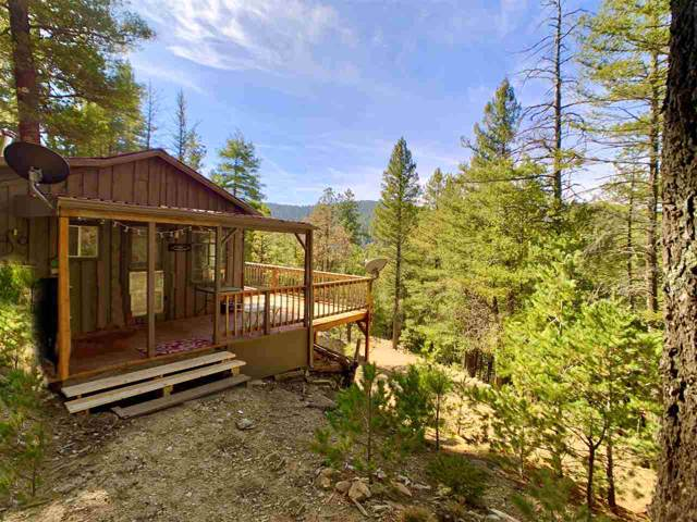 35 Fir Slope Dr, Cloudcroft, NM 88317 (MLS #161770) :: Assist-2-Sell Buyers and Sellers Preferred Realty