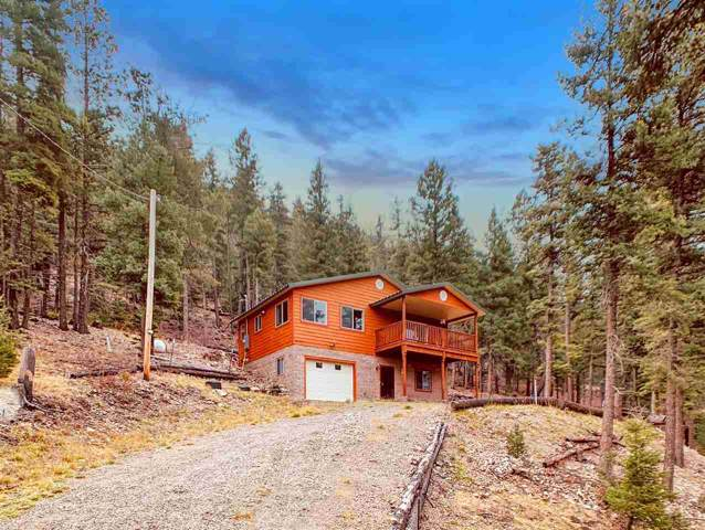 25 Young Spring Rd, Cloudcroft, NM 88317 (MLS #161805) :: Assist-2-Sell Buyers and Sellers Preferred Realty
