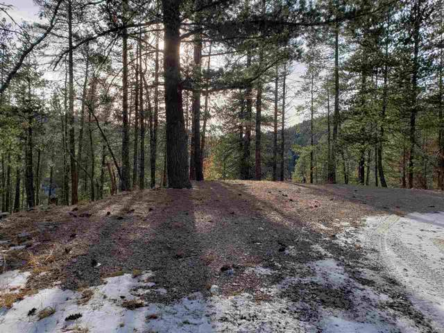 Camino Vista Dr, Cloudcroft, NM 88317 (MLS #161806) :: Assist-2-Sell Buyers and Sellers Preferred Realty