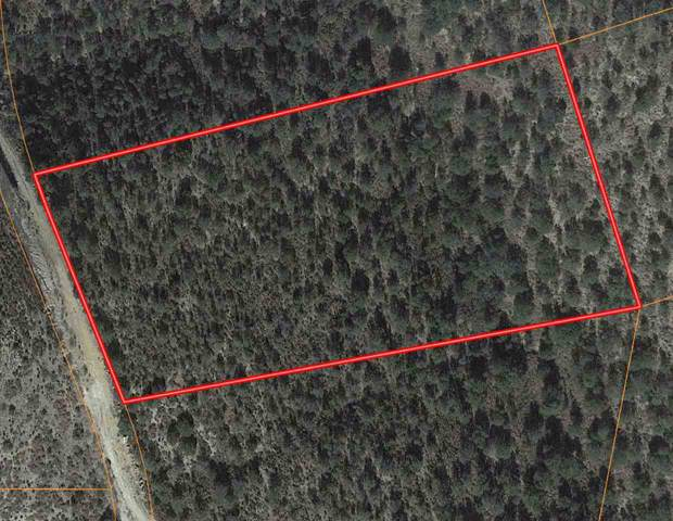203 Bear Ln #4, Timberon, NM 88350 (MLS #161877) :: Assist-2-Sell Buyers and Sellers Preferred Realty