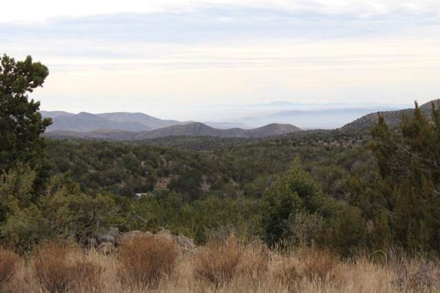 Lot 17 Cross Roads, Cloudcroft, NM 88317 (MLS #161897) :: Assist-2-Sell Buyers and Sellers Preferred Realty