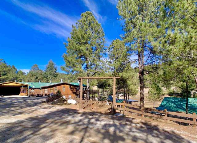 13 Friar Tuck, Mayhill, NM 88339 (MLS #161905) :: Assist-2-Sell Buyers and Sellers Preferred Realty