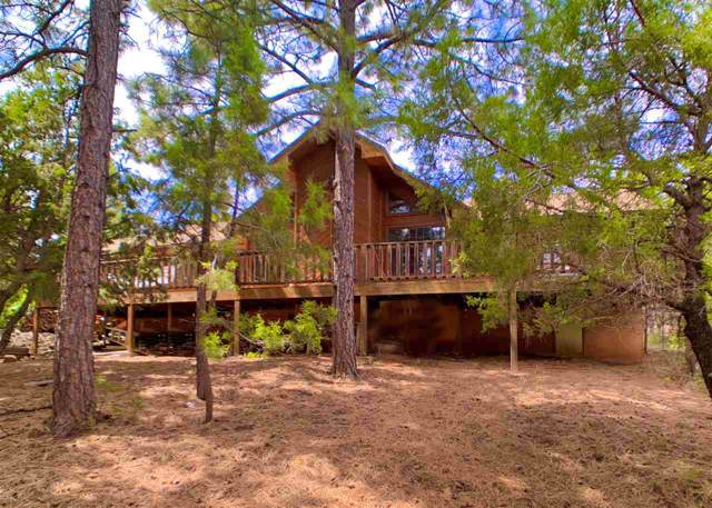 19 Nighthawk, High Rolls Mountain Park, NM 88325 (MLS #161957) :: Assist-2-Sell Buyers and Sellers Preferred Realty