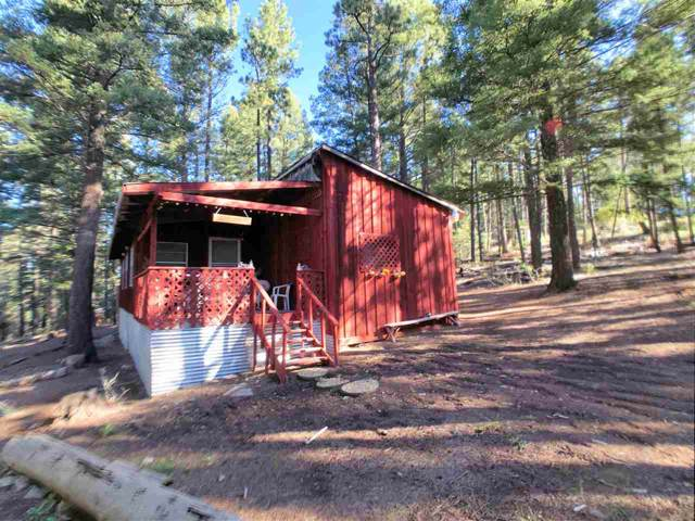 25 Skyline Dr, Cloudcroft, NM 88317 (MLS #161971) :: Assist-2-Sell Buyers and Sellers Preferred Realty