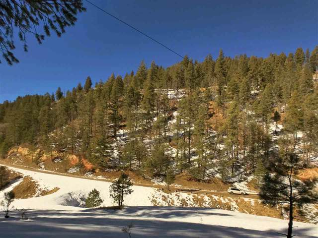 77 Wills Canyon Rd, Cloudcroft, NM 88317 (MLS #161990) :: Assist-2-Sell Buyers and Sellers Preferred Realty