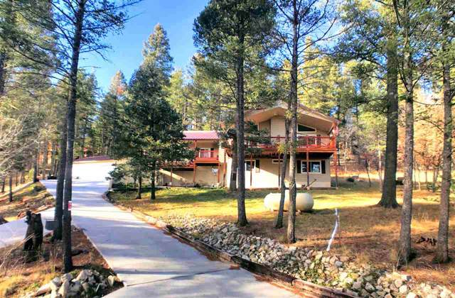 94 Silver Fox Trl #2, Mayhill, NM 88339 (MLS #161993) :: Assist-2-Sell Buyers and Sellers Preferred Realty