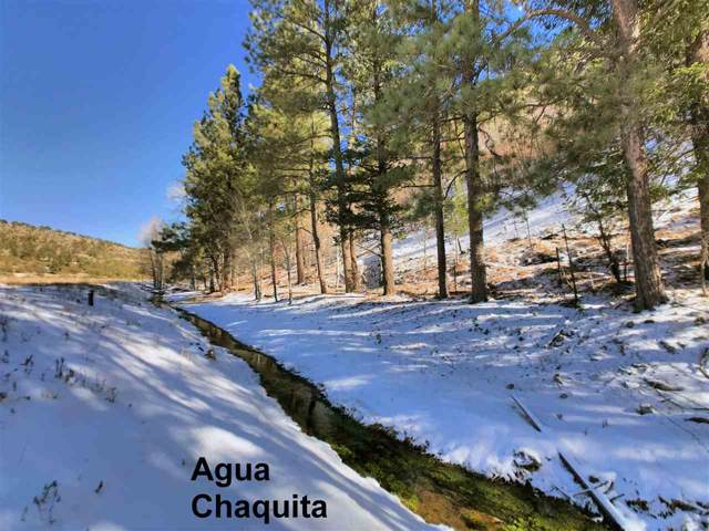 220 Agua Chiquita Rd, Weed, NM 88354 (MLS #162002) :: Assist-2-Sell Buyers and Sellers Preferred Realty