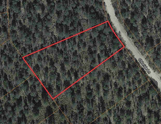 30 Chloride Ln, Timberon, NM 88350 (MLS #162007) :: Assist-2-Sell Buyers and Sellers Preferred Realty