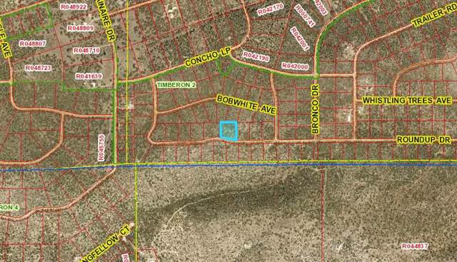 Lot 12 Roundup Dr, Timberon, NM 88350 (MLS #162015) :: Assist-2-Sell Buyers and Sellers Preferred Realty