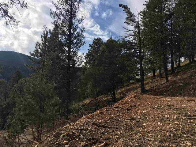 Black Forest Dr, Cloudcroft, NM 88317 (MLS #162035) :: Assist-2-Sell Buyers and Sellers Preferred Realty