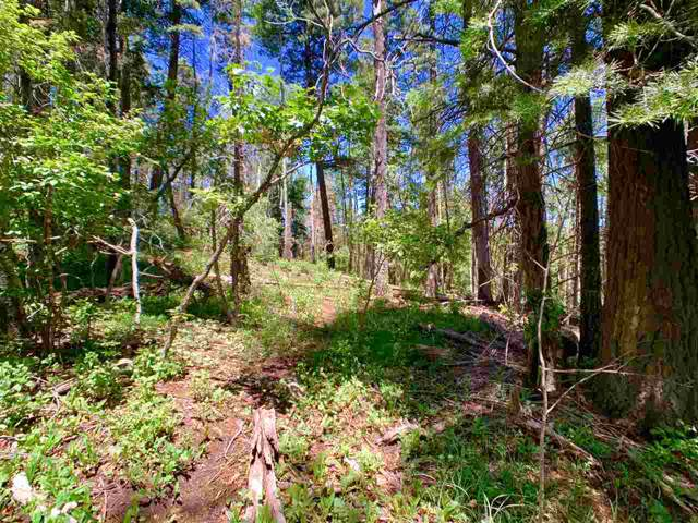 609 Maple Dr, Cloudcroft, NM 88317 (MLS #162053) :: Assist-2-Sell Buyers and Sellers Preferred Realty