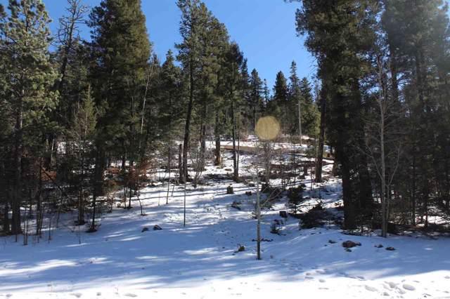 Lot 4 Big Bear Way Bp1, Cloudcroft, NM 88317 (MLS #162055) :: Assist-2-Sell Buyers and Sellers Preferred Realty