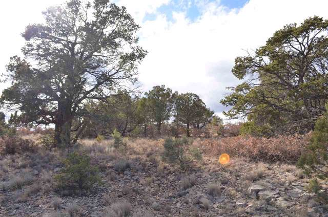 Timberon, NM 88350 :: Assist-2-Sell Buyers and Sellers Preferred Realty
