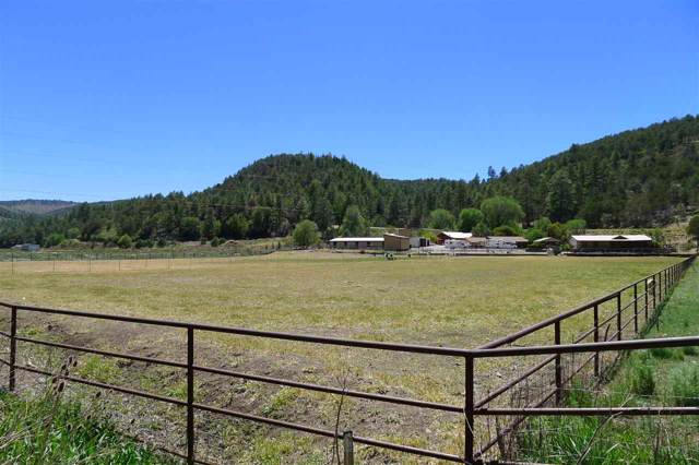 1908 Rio Penasco Rd, Mayhill, NM 88339 (MLS #162077) :: Assist-2-Sell Buyers and Sellers Preferred Realty