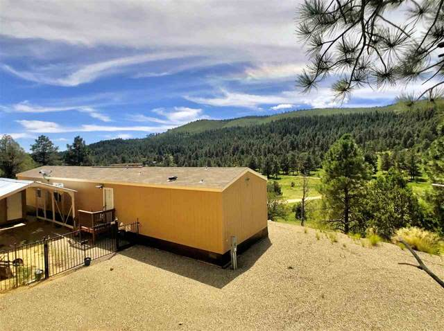 3015 Us Hwy 82, Mayhill, NM 88339 (MLS #162110) :: Assist-2-Sell Buyers and Sellers Preferred Realty