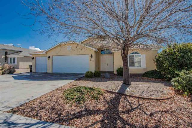 222 Ascot Parade, Alamogordo, NM 88310 (MLS #162138) :: Assist-2-Sell Buyers and Sellers Preferred Realty