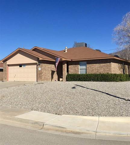 717 Candlewood, Alamogordo, NM 88310 (MLS #162142) :: Assist-2-Sell Buyers and Sellers Preferred Realty