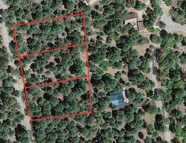 14 Aspen Dr Cc2, Cloudcroft, NM 88317 (MLS #162147) :: Assist-2-Sell Buyers and Sellers Preferred Realty