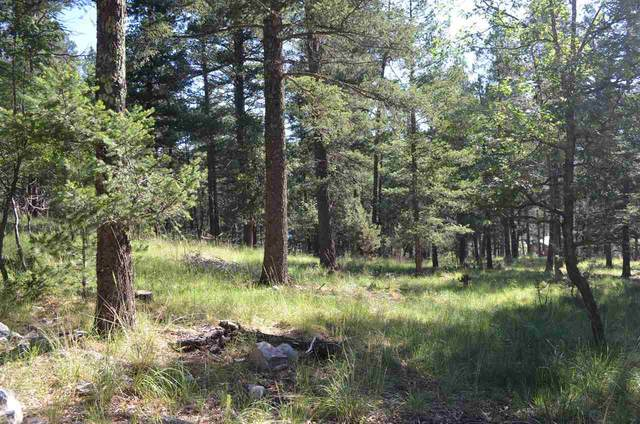 8 Aspen #2, Mayhill, NM 88339 (MLS #162151) :: Assist-2-Sell Buyers and Sellers Preferred Realty