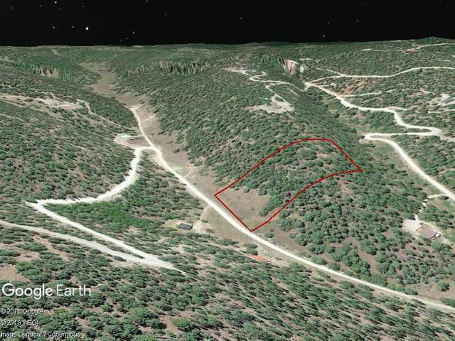 160 Young Canyon Rd, Cloudcroft, NM 88317 (MLS #162153) :: Assist-2-Sell Buyers and Sellers Preferred Realty
