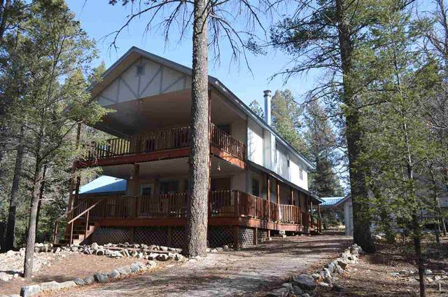 26 Timber Wolf #1, Mayhill, NM 88339 (MLS #162159) :: Assist-2-Sell Buyers and Sellers Preferred Realty