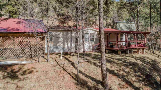 15 Andes Dr, Sacramento, NM 88347 (MLS #162162) :: Assist-2-Sell Buyers and Sellers Preferred Realty