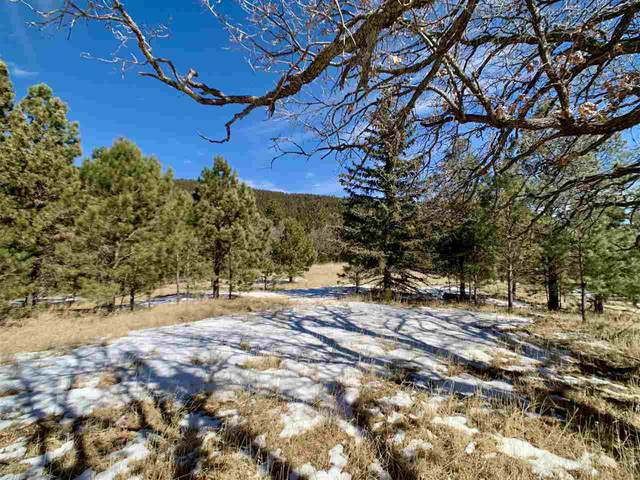 51 Canyon Trl #1, Cloudcroft, NM 88317 (MLS #162165) :: Assist-2-Sell Buyers and Sellers Preferred Realty