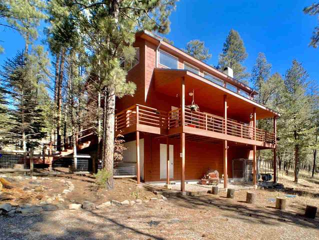 12 Iron Gate Pl, Mayhill, NM 88339 (MLS #162184) :: Assist-2-Sell Buyers and Sellers Preferred Realty