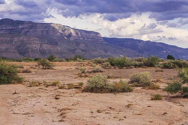 5 & 6 Chapparral Loop, Alamogordo, NM 88310 (MLS #162189) :: Assist-2-Sell Buyers and Sellers Preferred Realty