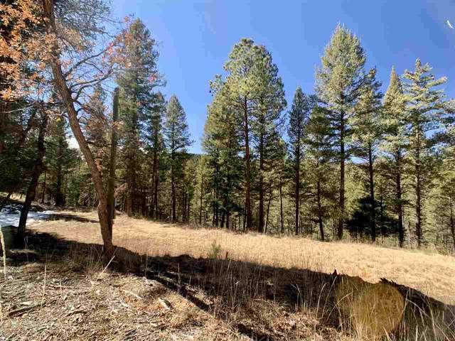 12 White Tail Pl, Mayhill, NM 88339 (MLS #162191) :: Assist-2-Sell Buyers and Sellers Preferred Realty