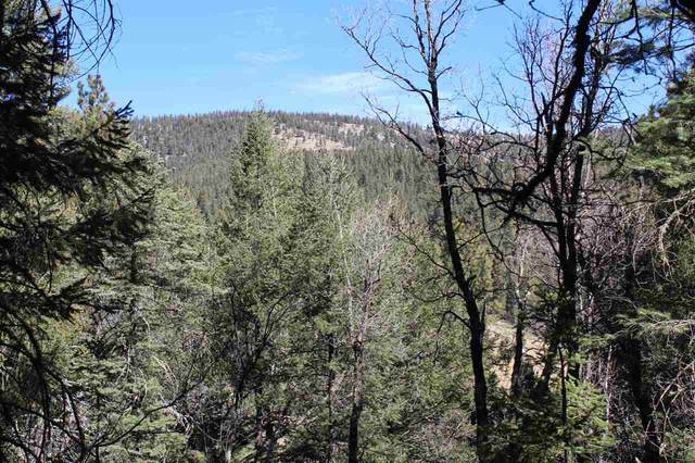 Lot 18+ Ponderosa Pines Trl Pp2, Cloudcroft, NM 88317 (MLS #162196) :: Assist-2-Sell Buyers and Sellers Preferred Realty