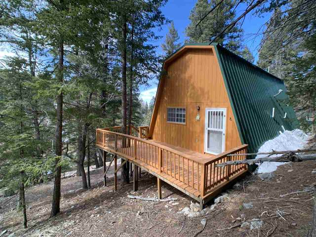 7 Spruce Trl #1, Cloudcroft, NM 88317 (MLS #162229) :: Assist-2-Sell Buyers and Sellers Preferred Realty