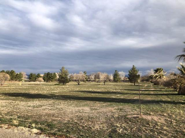 Lot 13 Abercrombie Acres, Tularosa, NM 88352 (MLS #162240) :: Assist-2-Sell Buyers and Sellers Preferred Realty