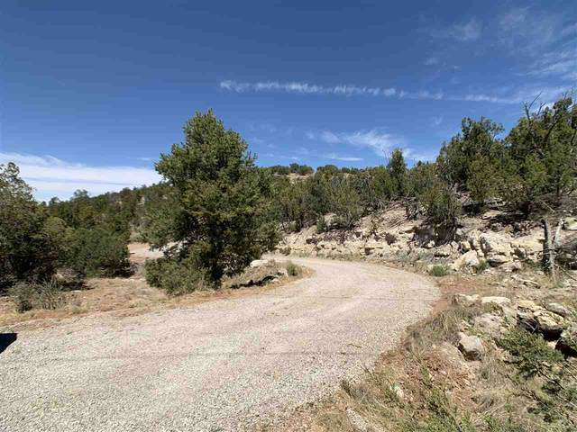 20 Red Rock Rd, High Rolls Mountain Park, NM 88325 (MLS #162274) :: Assist-2-Sell Buyers and Sellers Preferred Realty