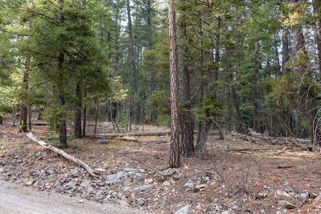 Raspberry Hill Rd, Cloudcroft, NM 88317 (MLS #162278) :: Assist-2-Sell Buyers and Sellers Preferred Realty