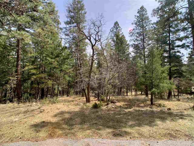 6 Aspen #2, Mayhill, NM 88339 (MLS #162334) :: Assist-2-Sell Buyers and Sellers Preferred Realty