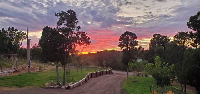 11 Mogollon Trl, High Rolls Mountain Park, NM 88325 (MLS #162340) :: Assist-2-Sell Buyers and Sellers Preferred Realty