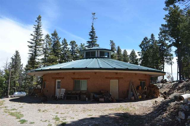 185 Big Dipper Rd, Cloudcroft, NM 88317 (MLS #162352) :: Assist-2-Sell Buyers and Sellers Preferred Realty