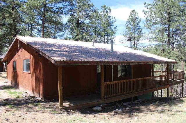 28 Happy Ln Mje, Mayhill, NM 88339 (MLS #162362) :: Assist-2-Sell Buyers and Sellers Preferred Realty