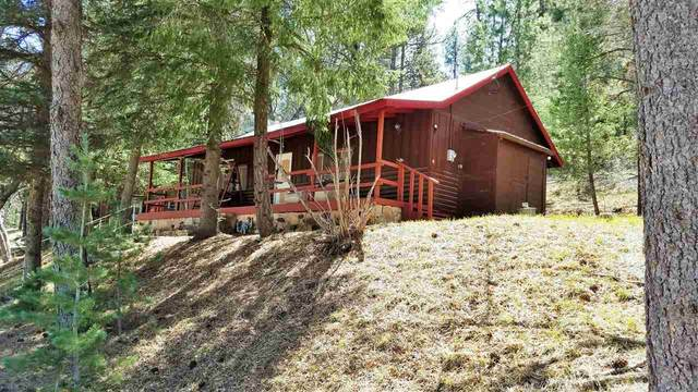 3 Robin Dr, Cloudcroft, NM 88317 (MLS #162366) :: Assist-2-Sell Buyers and Sellers Preferred Realty