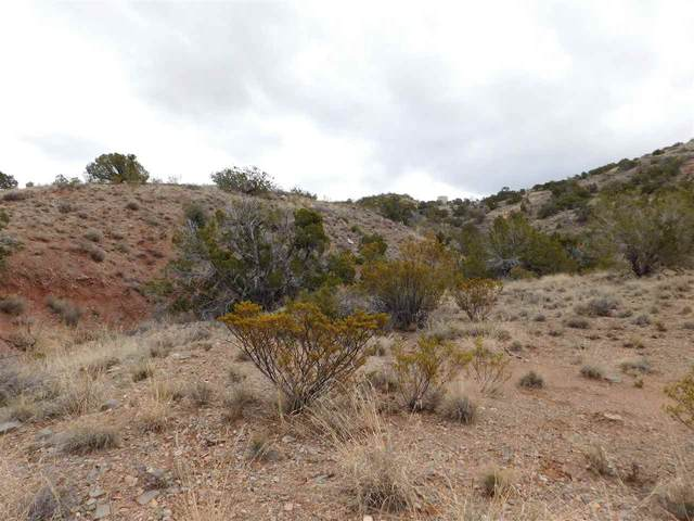 Fresnal Canyon Rd, La Luz, NM 88337 (MLS #162368) :: Assist-2-Sell Buyers and Sellers Preferred Realty