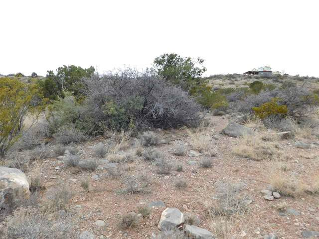 Fresnal Canyon, La Luz, NM 88337 (MLS #162369) :: Assist-2-Sell Buyers and Sellers Preferred Realty