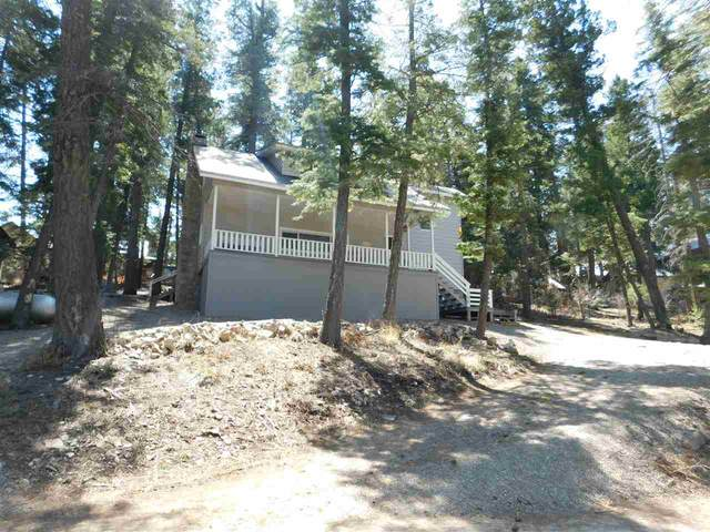 708 Curlew Pl, Cloudcroft, NM 88317 (MLS #162376) :: Assist-2-Sell Buyers and Sellers Preferred Realty