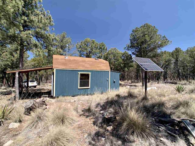 47 Settlers Ln #2, Timberon, NM 88350 (MLS #162386) :: Assist-2-Sell Buyers and Sellers Preferred Realty