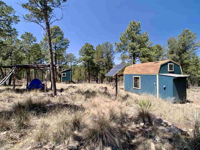 47 Settlers Ln #2, Timberon, NM 88350 (MLS #162387) :: Assist-2-Sell Buyers and Sellers Preferred Realty
