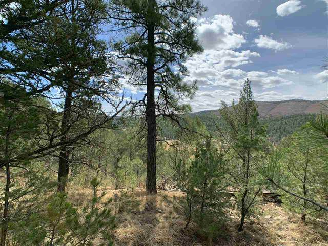 147 Bell Dr, Mayhill, NM 88339 (MLS #162466) :: Assist-2-Sell Buyers and Sellers Preferred Realty